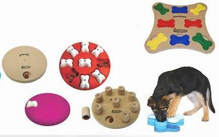 juguetes-interactivos-residencia-canina-madrid